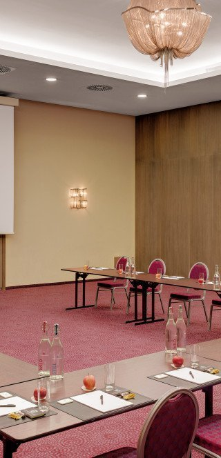 "Prepared conference room ""Gardenhall"" in Davos"